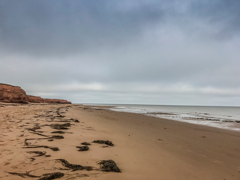 pei thunder cove beach.jpg
