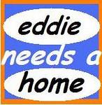 EDDIE NEEDS A HOME