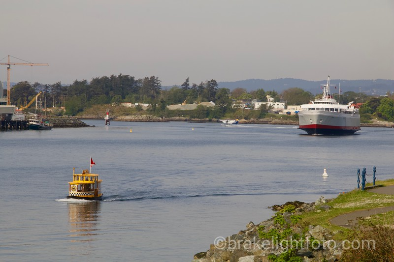 Busy Middle Harbour