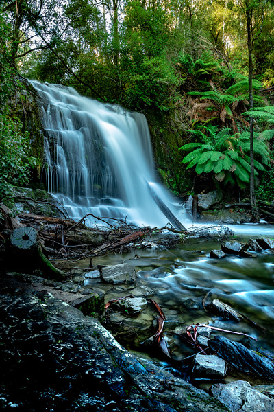 Tasmania-JUL2019-Lilydale-Falls-Lower-1.jpg