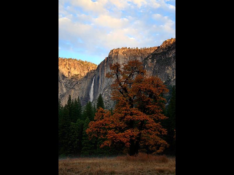 Yosemite Valley Fall.jpg