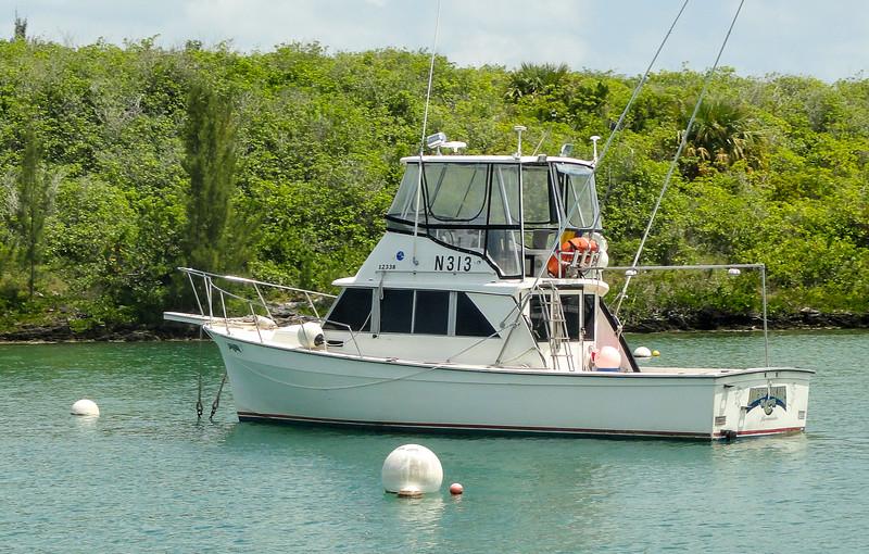 Bermuda-00796.jpg