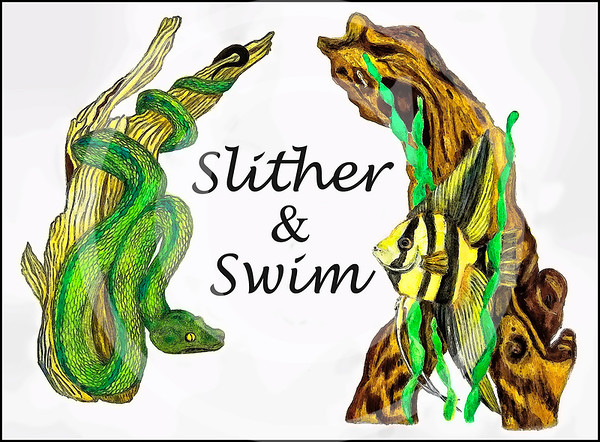 Slither and Swim