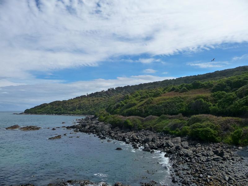 New Zealand - Nugget Bay