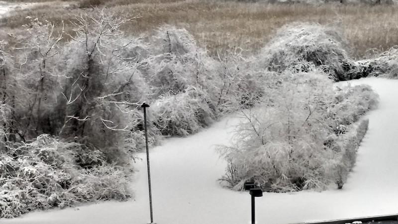 Winter Trip_2019-12-11_07-54-59_IMG_20191211_075458276_HDR.jpg