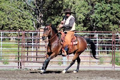 Dave Ellis Vaquero Cow Clinic June '17
