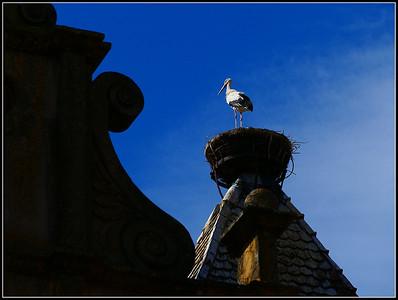 Rouffach (Alsace)