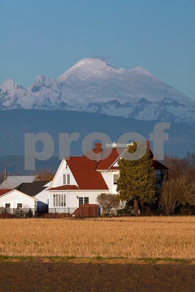 Farm & Mt. Baker 0417.jpg