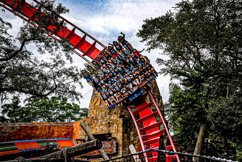 Busch Gardens - Tampa, Florida