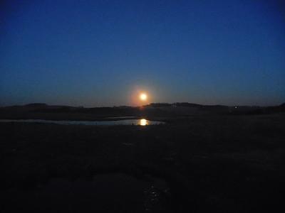 Dec 3 Moonset