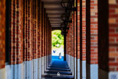 University of Washington and Reuben's Brews