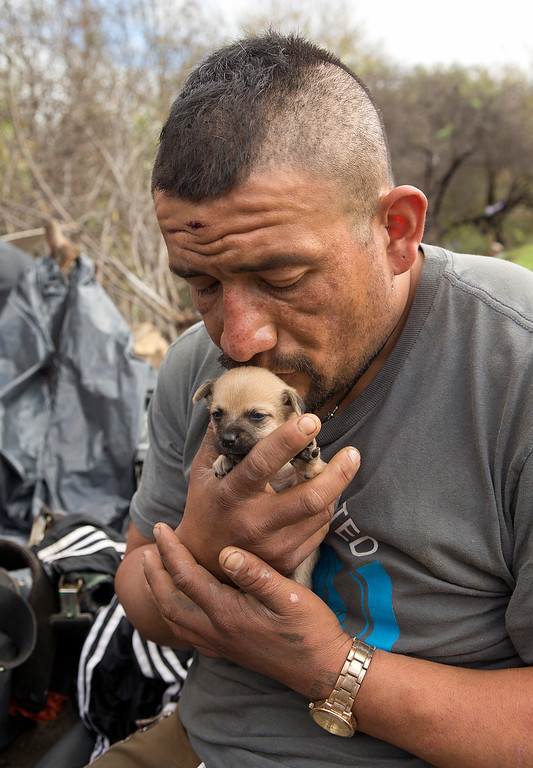 . Valentin Cortez-Oseguer kisses his puppy, Beautiful, as he prepares to leave the homeless encampment known as The Jungle in San Jose, Calif., on Thursday, Dec. 4, 2014. (LiPo Ching/Bay Area News Group)