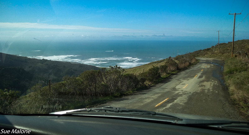 02-16-2016 Lost Coast from Deb-12.jpg
