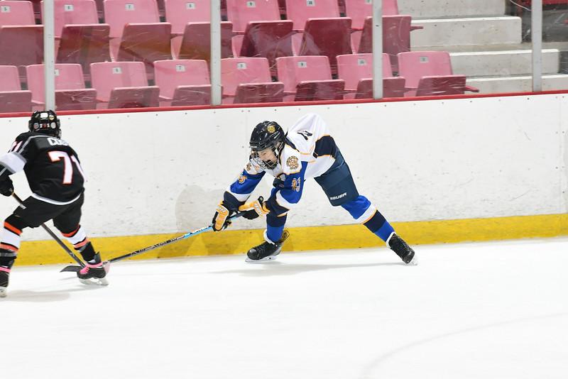 Orda-CANAM-CANAM Hockey 1980 Rink-id224951985.jpg