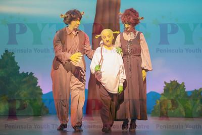 Shrek-2014