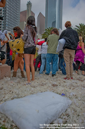 Pillow Fight Day, Los Angeles 2011