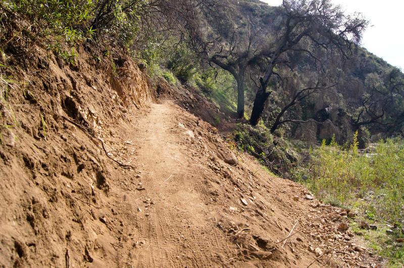 201201291604-El Prieto Trailwork.jpg