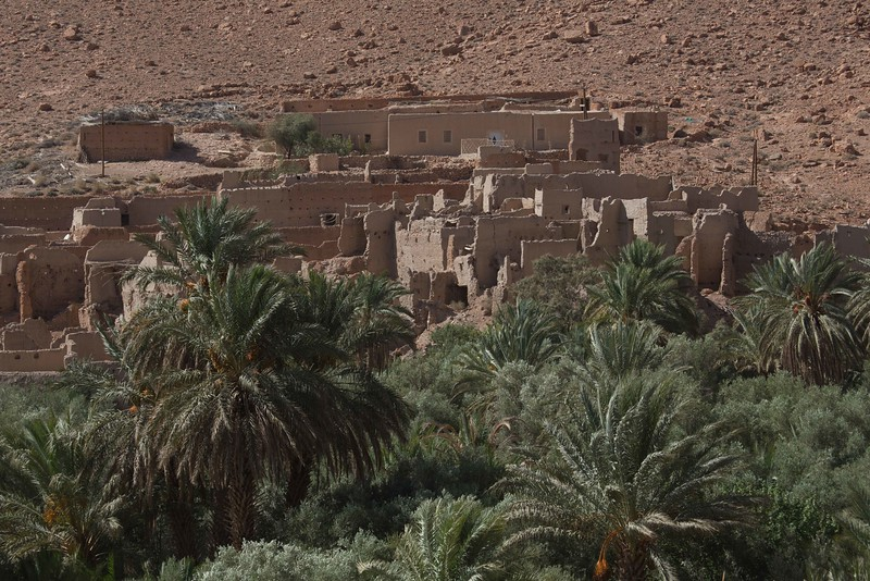 160924-092817-Morocco-9936.jpg