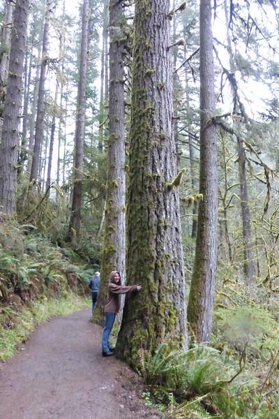 Diane hugging a tree