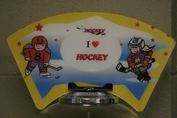 2009.07.06 - Hockey at the OIC