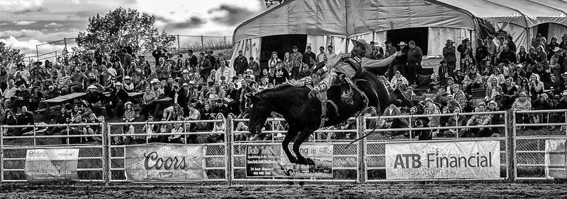 Airdrie_rodeo_survey-184-Edit-Edit-2.jpg