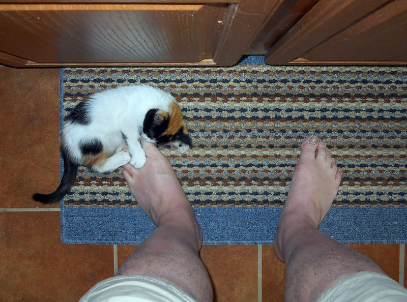 THOSE ARE MY TOES!!!