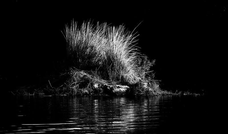 Zambezi River, Zambabwe. 2013