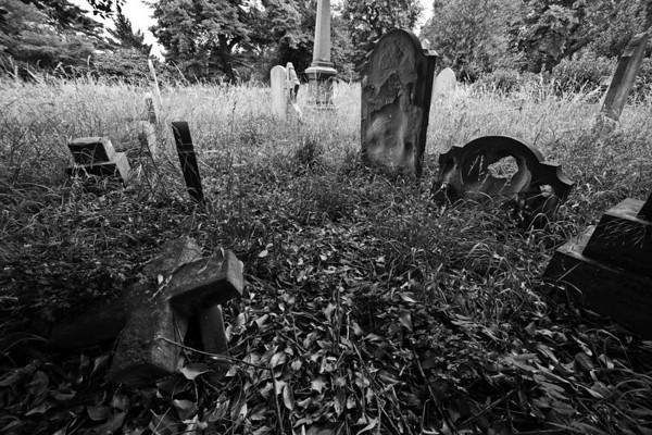 Brompton Cemetary, London. Shannon Corr Photography