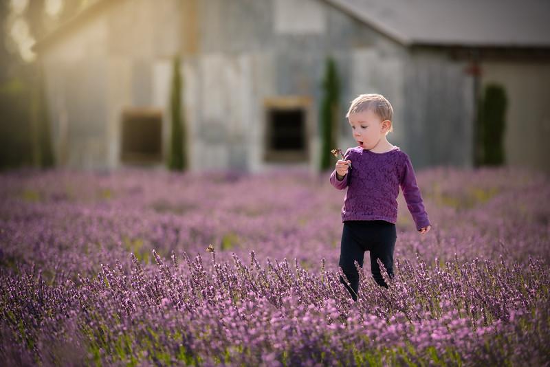 Vivian LavenderNoWM.jpg