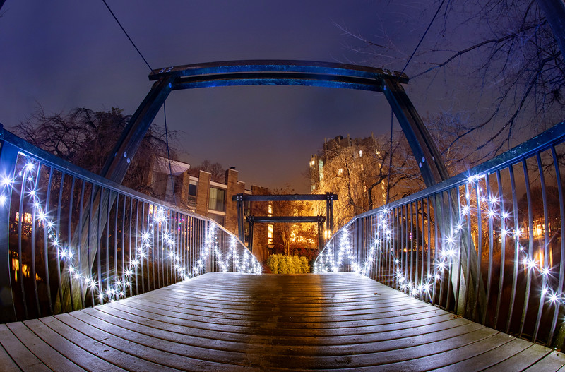 Van Gogh Bridge with holiday lights