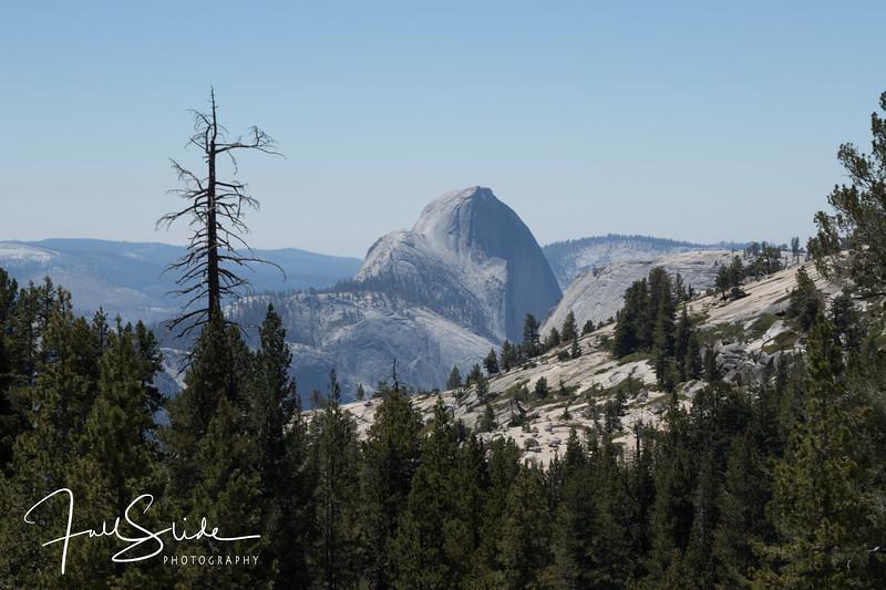 Yosemite 2018 -21.jpg