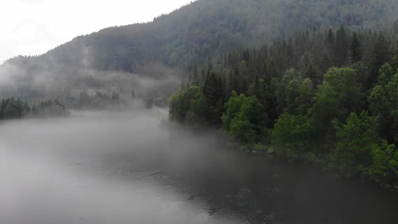 River Fog Mood | B-roll video footage