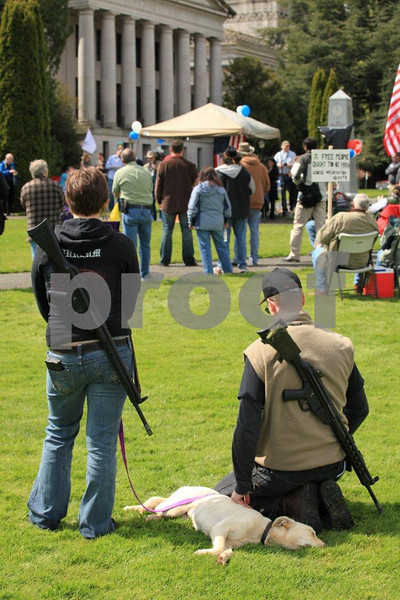 Protesters carrying signs about gun control, right to carry and the Second Ammendment rights. Olympia, WA.