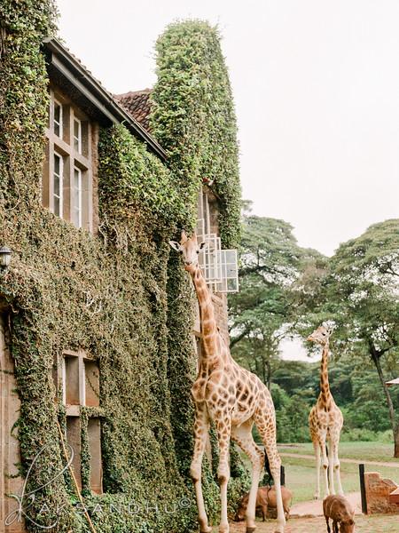 Safari-Africans-154.jpg