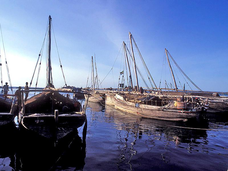 דייגים בנמל.jpg