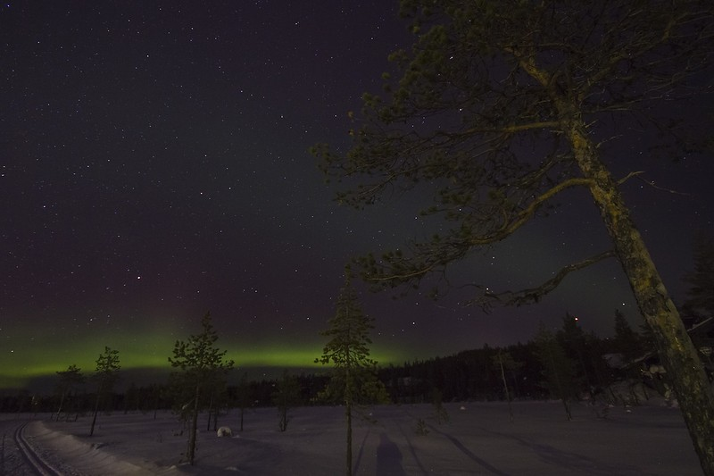 Northern Lights Tours in Finland