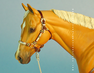 Miniature Western Show Halters With Braidwork