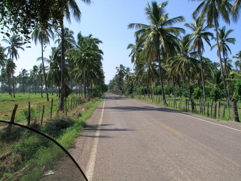 Road to Tenacatita