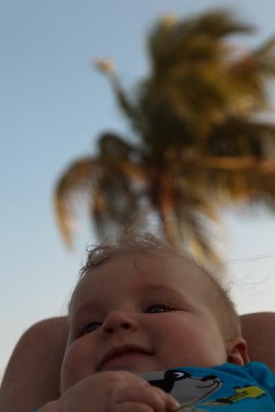 Jurek pod palmami