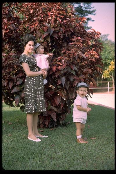 Piscina de Andrada - 1965