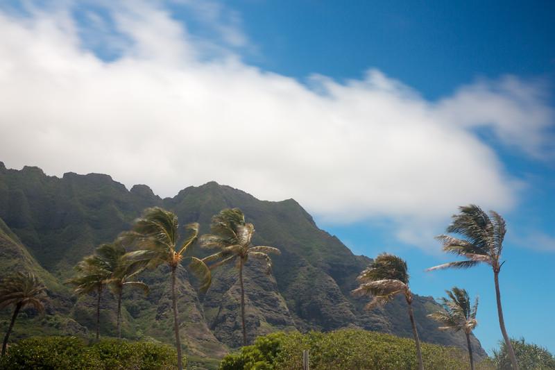 Hawaii - 062212 - 581.jpg