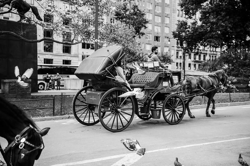 Max & Mairene - Central Park Elopement (31).jpg