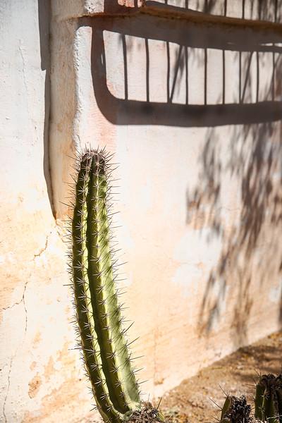 2017-10Oct-Tucson-111-Edit.jpg