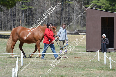 118 Michelle & Peanut Butter 04-21-2013