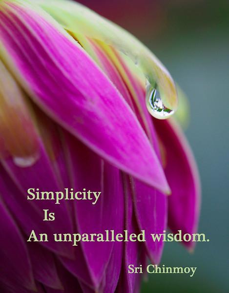 simplicity-is-wisdom.jpg