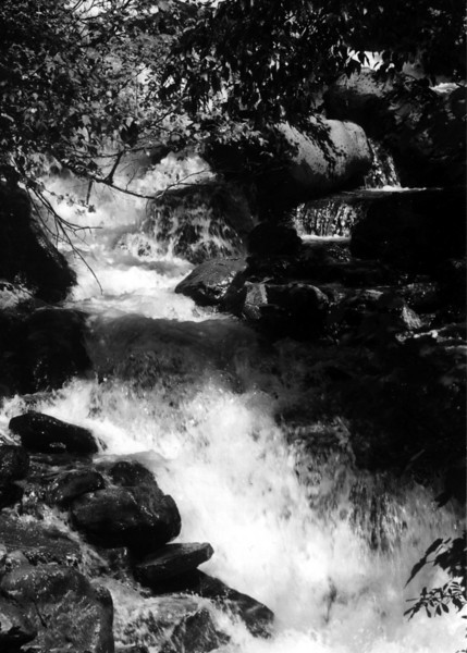 waterfall5x7bw.jpg
