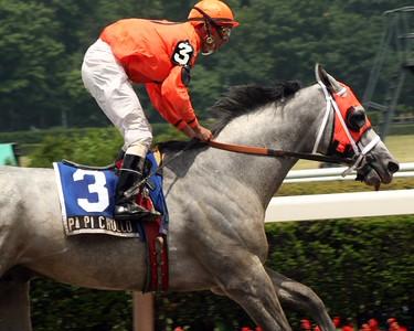 2007 Belmont Undercard