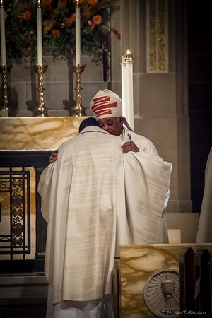 Priesthood Ordination (2014)