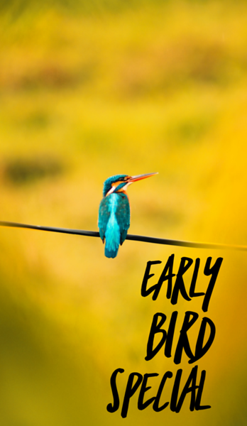 2021/04/20 Early Bird Special