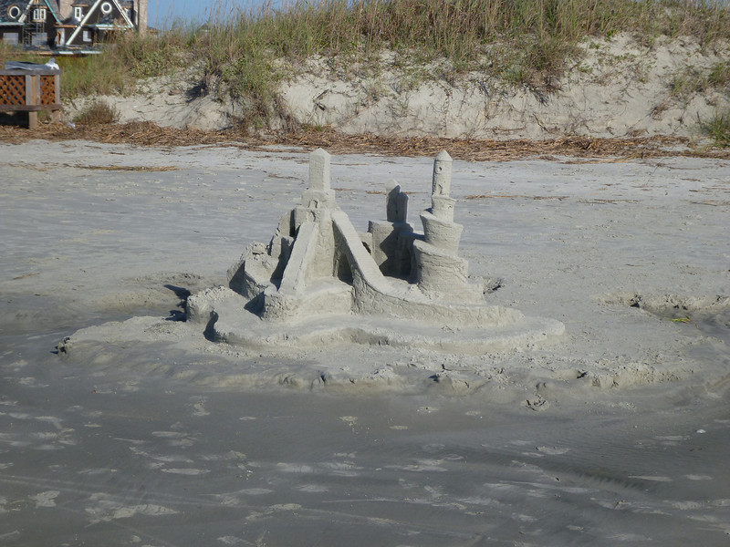 Ed saw this on the beach